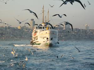 Bu yıl denizyoluna 533 milyon lira yatırım yapılacak
