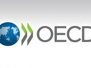 OECD: Küresel korsan ve sahte mal ithalatı 500 milyar dolara yaklaştı
