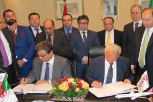 THY ve Cezayir Havayolları kod paylaşımı yapacak
