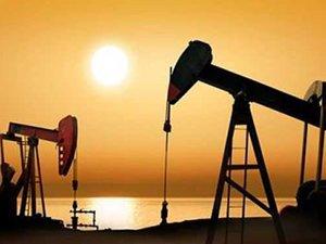 Yabancılardan enerji sektörüne yatırım çağrısı