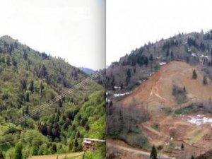 Bakan Eroğlu: HES'lerin çevreye zararı neredeyse yok