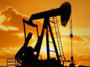 Brent petrol 43 dolar seviyelerinde dengelendi