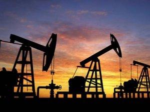 Brent petrol 50 doların altına geriledi