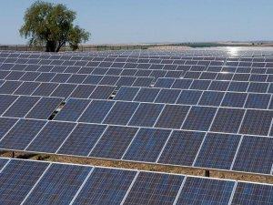 '2025 itibarıyla güneşten elde edilen enerji maliyeti yaklaşık yüzde 59-60 düşecek'