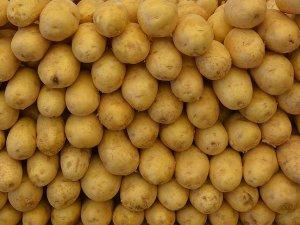 Patates sektör temsilcilerini sevindirdi