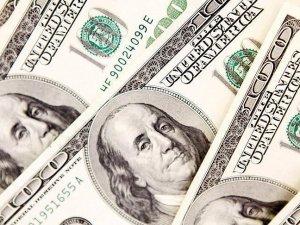 Merkez Bankası brüt döviz rezervleri 20 ayın zirvesinde