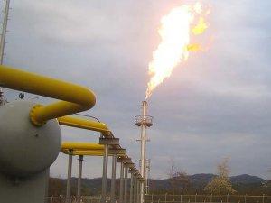 BOTAŞ'ın gaz ithalatı azalacak