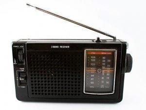 Norveç, FM radyo yayınına son veren ilk ülke olacak
