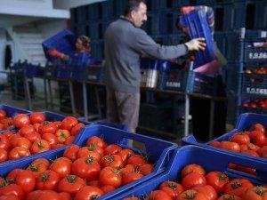 Yaş meyve sebze sektöründe gözler Rusya'ya çevrildi