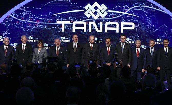 tanap_2.jpg